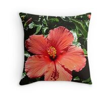 Hi Biscuits...I Mean Hibiscus! © Throw Pillow