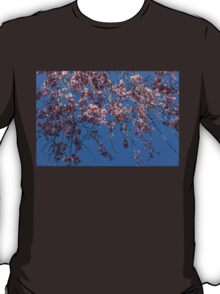 Pretty in Pink - a Flowering Cherry Tree and Blue Spring Sky T-Shirt