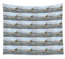 China nets Wall Tapestry
