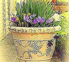 The flower pot by Karen Cook