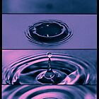 The Dropping of a drip by Paul Grinzi