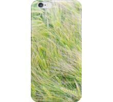 Green Barley Closeup iPhone Case/Skin