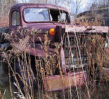 Power wagon by Tom Farley