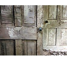 Crackled Duo Photographic Print