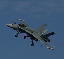 "F/A-18A Hornet ""Dirty"" Fly-By by Daniel McIntosh"
