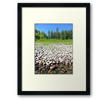 White, Greens and Blues Framed Print
