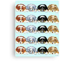 Australian Shepherd Puppies all 4 colors Canvas Print