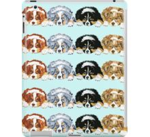 Australian Shepherd Puppies all 4 colors iPad Case/Skin