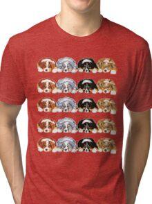 Australian Shepherd Puppies all 4 colors Tri-blend T-Shirt