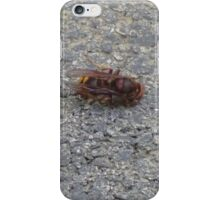 A dying hornet n°3 iPhone Case/Skin