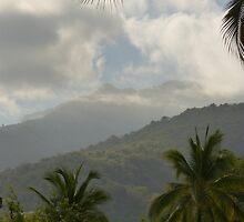 the tropical zone of the sierra madre - zona tropical de sierra madre by Bernhard Matejka