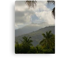 the tropical zone of the sierra madre - zona tropical de sierra madre Canvas Print