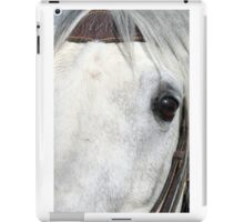 White Horse Eye iPad Case/Skin