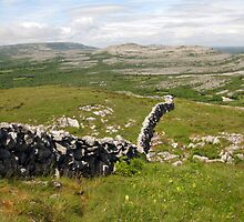 Wall in The Burren by John Quinn