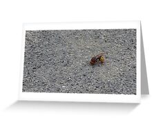 A dying hornet n°1 Greeting Card