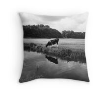 Untitled Throw Pillow