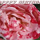 Pepperment Rose Happy Birthday by TLCGraphics