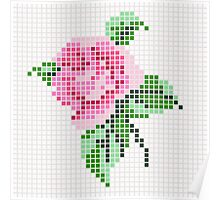 Shabby Chic Pink Rose Poster