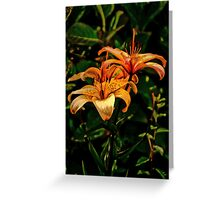 Vintage Lily Greeting Card