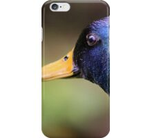 Magnificent Mallard iPhone Case/Skin