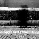 black&white by halina1601