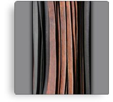 Leather lines Canvas Print