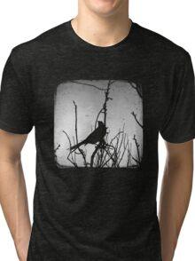 Wattlebird - Black Tri-blend T-Shirt