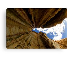 Falling Upwards Canvas Print
