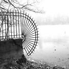 Ice cold lake park of Tete d'Or, Lyon, France by KERES Jasminka