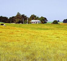 Countryside by JuliaWright