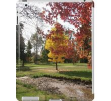 The Promise of Things to Come, Tumut, Australia. iPad Case/Skin