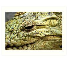 Scale eye Art Print