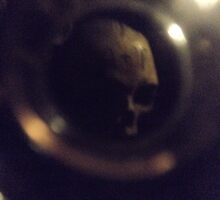 Lost Skull In Paris Catacombs  by edend