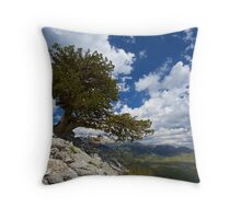 All is silent Throw Pillow