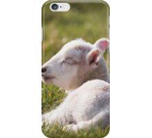 Young Lamb #1 iPhone Case/Skin
