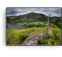 Foxglove above Rydal water Canvas Print