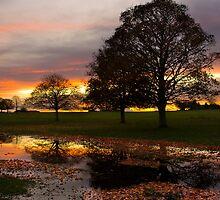 Reflected sunset by Jon Tait