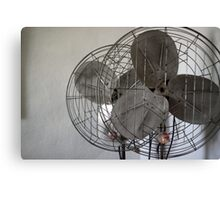 church fans Canvas Print
