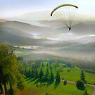 Dreamy Descent by Igor Zenin