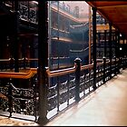 Bradbury Building by Christine Elise McCarthy