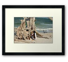 Looking for the perfect shot Framed Print