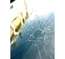 Water Webs Photographic Print