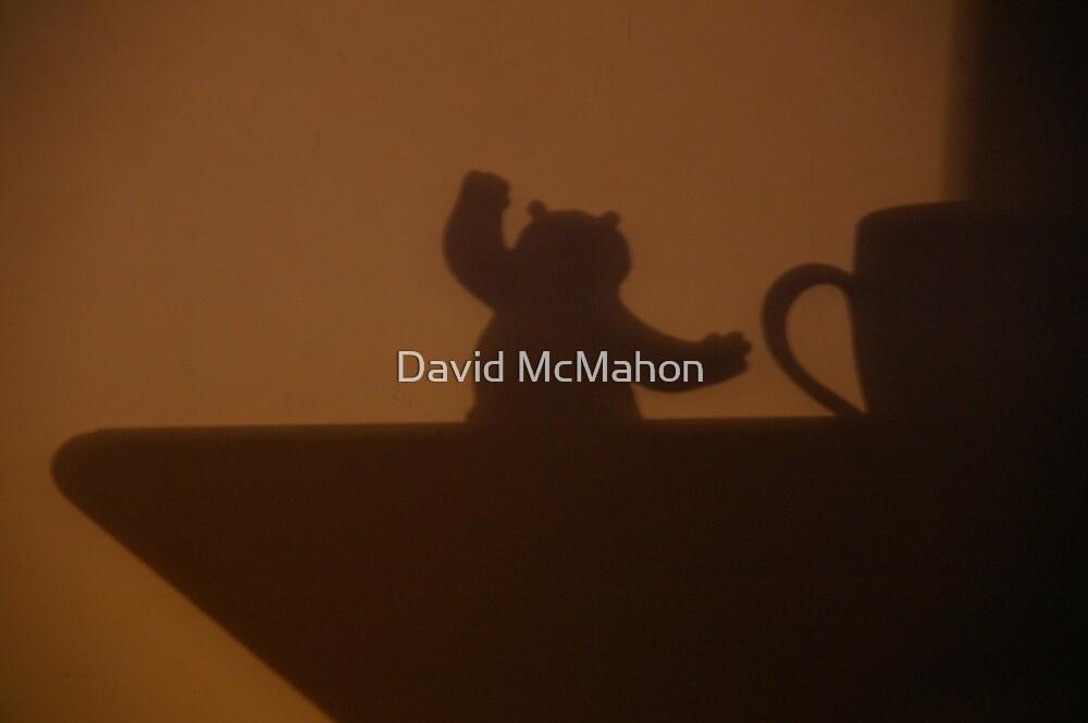 Everybody Was Kung Fu Fighting, Er, Lighting! by David McMahon