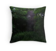 The old windmill. Throw Pillow