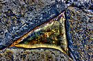 Rock Pool by Roddy Atkinson