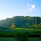 Makua Valley by kevin smith  skystudiohawaii