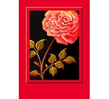 'FANDANGO ROSE' Digital Painting Photographic Print
