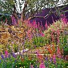 Desert Monet by Linda Gregory