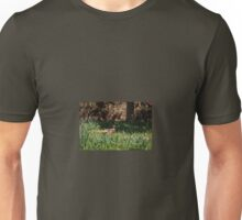 Pheasant in the Bluebells Unisex T-Shirt