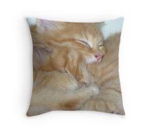 Kitten Hugs Throw Pillow